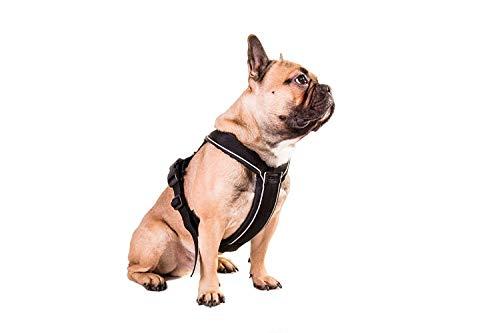 Non-Stop Dogwear Line - Arnés Acolchado y Ajustable, Talla 3,...