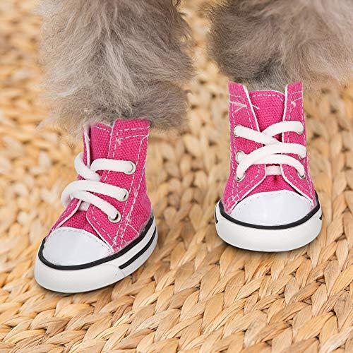 DAUERHAFT Zapatillas de Deporte Rosa para Perros, Zapatos para...