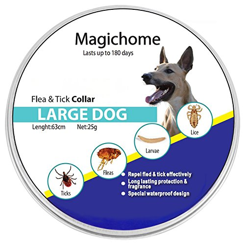 Magichome Collar Antiparasitario para Perros contra Pulgas,...