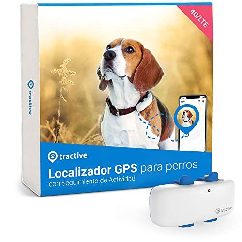 Tractive Collar GPS Perros (2021), Conozca la ubicación de su...