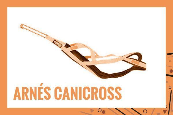 arnes-canicross