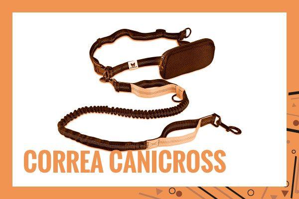 correa-canicross