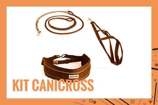 kit-canicross