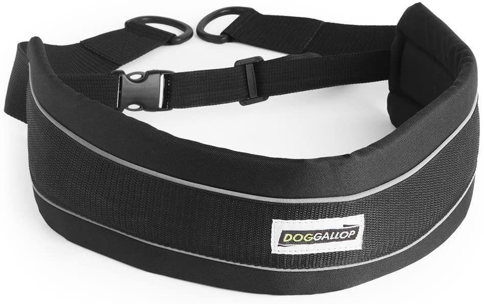 Doggallop DOGBELT Cinturón Canicross