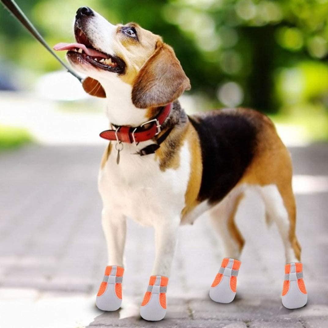 et Dog Shoes Cool CóModo