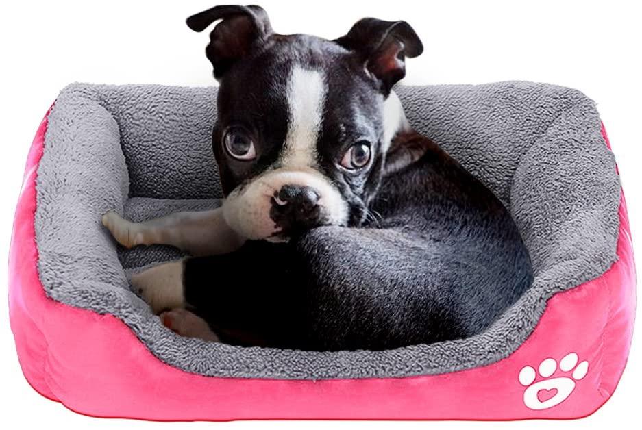 PowerKing Colchón Cuadrado para Cama de Perro pequeño