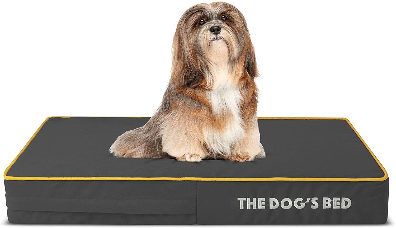 cama para perro de espuma viscoelástica