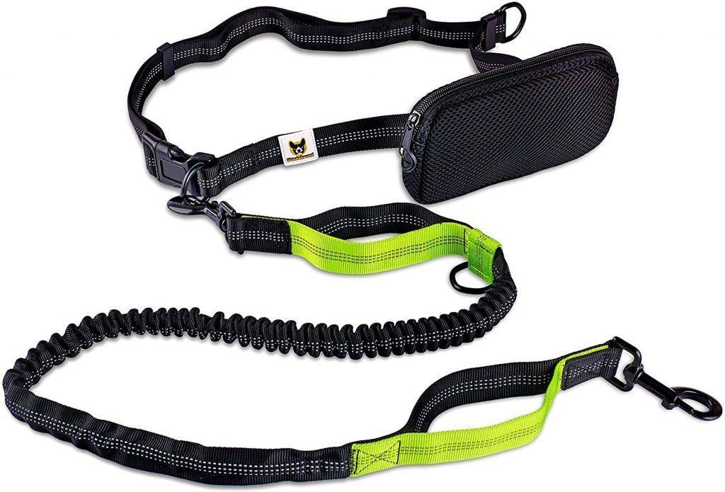 Correa para hacer jogging – Para perros, reflectante y elástica, de 120 cm (extensible hasta 200 cm)