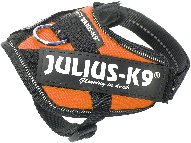 Julius-K9 16IDC Naranja