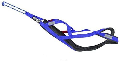 Neewa 8033087538991 - Sled Pro arnés Azul XXXL