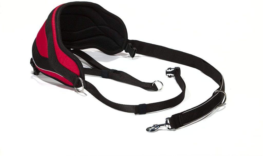 actifdog - Cinturón para Perros, canicross, Caminar, Correr